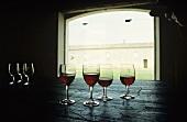 Stillleben mit Weingläsern, Cabernet Sauvignon, Bordeaux, Frankreich