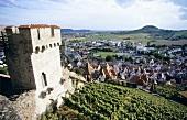 'Hohenbeilsteiner Schlosswengert' Einzellage with Schlossgut Hohenbeilstein, DE