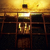 Wine cellar of Crama Urlateanu Winery, Romania
