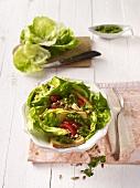 Kopfsalat mit gebratenem Tofu und Salsa Verde