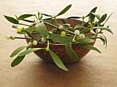 Sprigs of mistletoe in a wooden bowl
