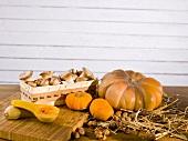 Organic mushrooms on a wooden basket, pumpkins and hazelnuts
