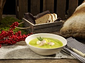 Cream of lettuce soup with trout fillet and horseradish