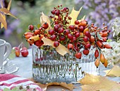 Bunch of rose hips and autumn leaves in glass vase