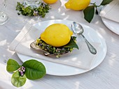 Lemon in wreath of lemon thyme in silver dish