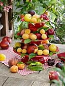 Etagere mit Nektarinen, Pfirsichen, Pflaumen und Aprikosen