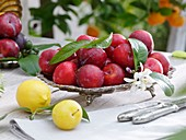 Dish of red plums, lemon and yellow plum in foreground