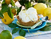 Lemon ice cream with lemon zest in wafer bowl