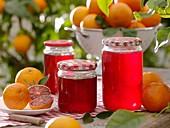 Blutorangengelee in Marmeladengläsern