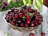 Sweet cherries in silver bowl on garden table