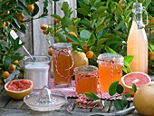 Grapefruit jelly, grapefruit juice, sugar and fresh fruit