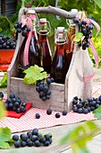 Bottles of red grape juice in bottle carrier