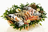Fresh fish and seafood in basket
