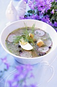 Cucumber soup with radishes, dill and egg