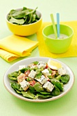 Salad of spinach, blue cheese, fresh broad beans and garlic