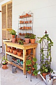 Plant table with flowerpots