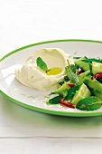 Cucumber salad with mint and cream cheese