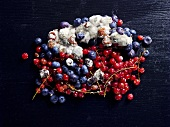Mouldy berries (overhead view)