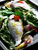 Sea bass wrapped in savoy cabbage on baking tray