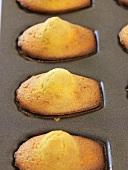 Madeleines in baking tin
