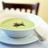 Green asparagus cream soup