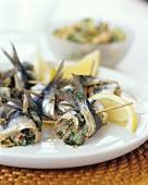 Sardine rolls filled with herbs