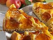 Apricot cake, a piece cut