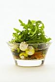 Mozzarella in oil with rocket salad