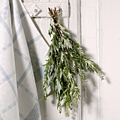 A bunch of mugwort hanging up to dry