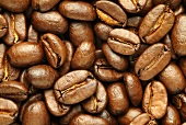 Roasted coffee beans (filling the picture)