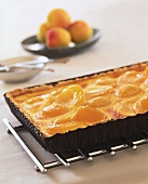 Apricot tart in a square baking dish