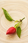 Small chili pepper on a wooden board