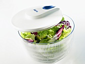 Salad spinner with assorted salad leaves