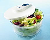Salad spinner with salad leaves and vegetables