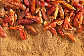 Dried chili peppers and chili powder, full frame