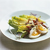 Romaine lettuce with boiled egg and fried bacon