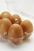 Brown eggs in an egg box