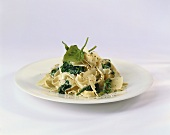 A Nest of Fresh Spinach Pasta