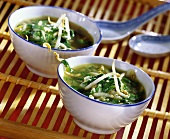 Spinach soup with soya sprouts