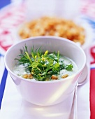 Herb soup with croûtons