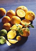 Still life with citrus fruits