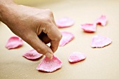Laying out candied rose petals