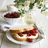 Soft cheese and raspberry sandwich