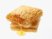 Zwei Stück Honigwabe mit weißem Hintergrund