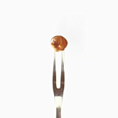 Eine Haselnuss auf einer Fleischgabel