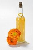 Marigold essence