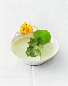 Herb soup with fresh nasturtium and salad burnet