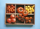 Various types of tomatoes in letter case