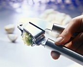 Pressing garlic through garlic press