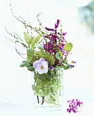 Hyacinth, horned violets and herbs in glass
